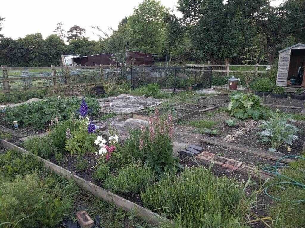 Our allotment after 2.5 years