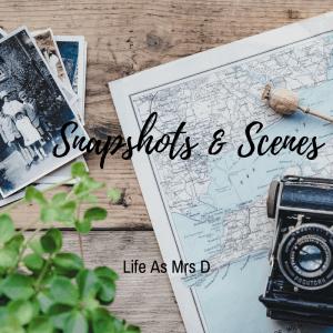 Snapshots & Scenes